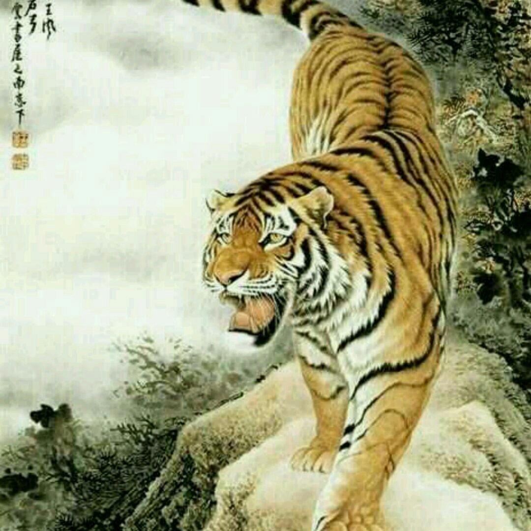 壁纸 动物 虎 老虎 桌面 1080_1080